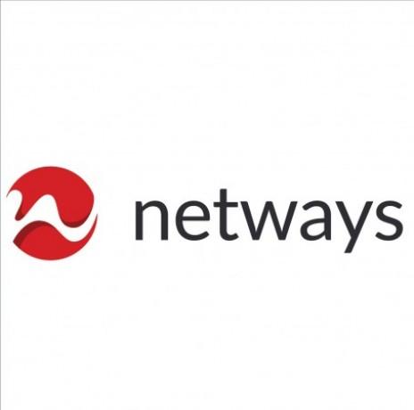 Logo Netways